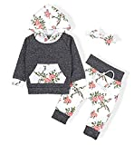 Sfuzwg Infant Baby Boy Girl Kapuzenpullover Hosen Stirnband 3PCS Sets mit Pocket Toddle Floral Sweatshirt
